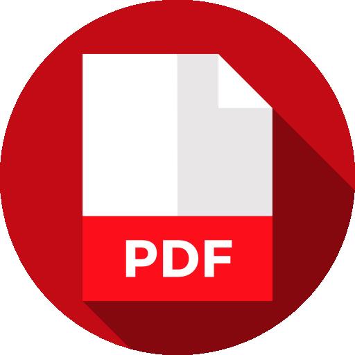 Padron Vehicular.pdf